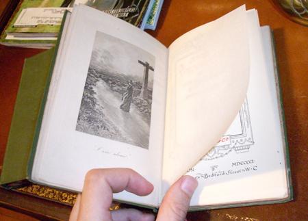 Brontebooks6
