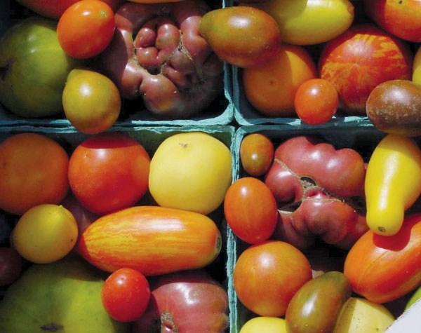 Heirloom-tomatoes